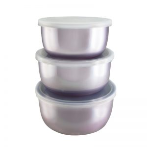 Japanese Food Container